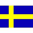 Schwedische Kronen